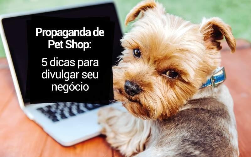Propaganda De Pet Shop: 5 Dicas Para Divulgar Seu Negócio
