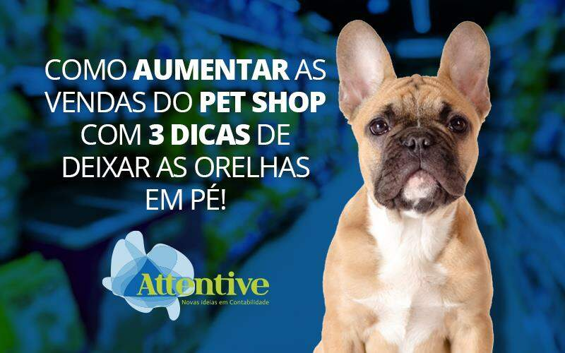 Aumentar As Vendas Do Pet Shop
